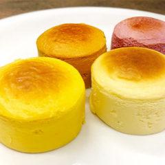 南七彩チーズケーキ